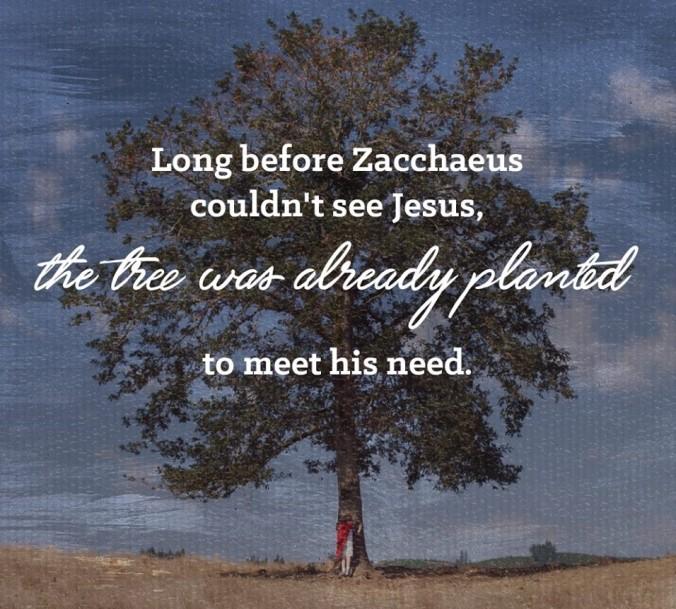 zachaeus